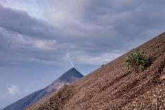 Volcano_Accatenango-11