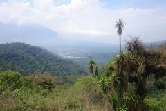 Antigua_atd-16