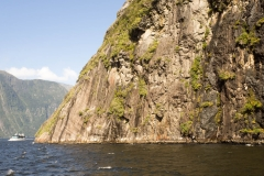 Milford_Sounds-14